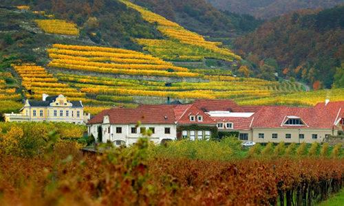 Wachau har blitt egen DAC region i Østerrike